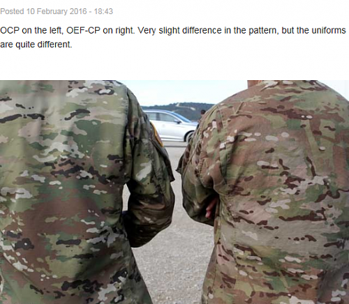 OCP-and-OEF-CP.png